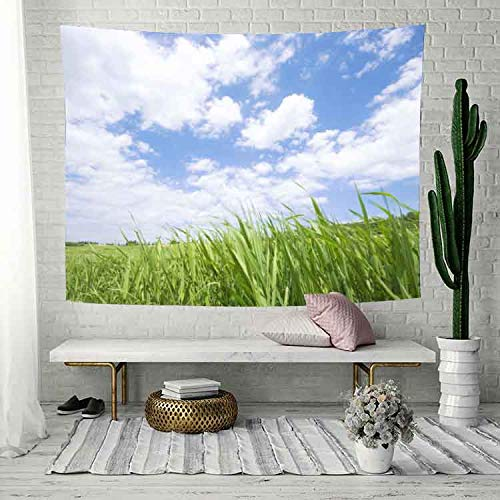 Simsant Prairie Tapestry Blue Sky White Cloud Wall Blanket Natural Scenery Wall Hanging(80x60inches 203.2x152.4CM) SIXC121