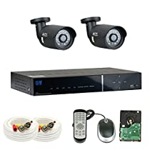 GW Security 8 Channel DVR HD 1.3MP 960P AHD CCTV Security Camera System with Two 1.3MP AHD Camera Pre-Installed 1TB HDD