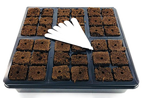 Seed Starter Tray for Planting Seeds Or Starting Cuttings | Our 10x10 Seedling Starter Trays Comes with 36 Seed Starter Plugs | E Z-GRO Plant Tray is The Ideal Seed Starter Kit and Propagation Tray by EZ-gro