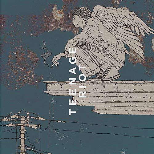 米津玄師 / Flamingo/TEENAGE RIOT(ティーンエイジ盤)[DVD付初回限定盤]