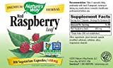 Natures Way Red Raspberry Leaf 450 mg, 100 Vcaps