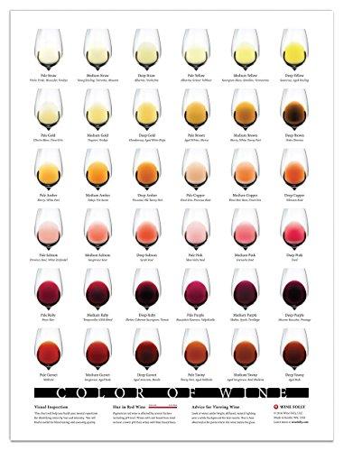 blind wine tasting - 9