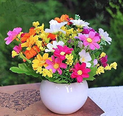 Amazon & Amazon.com: Mini Artificial Flowers Ball with Ceramic Pots ...