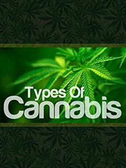 Types Of Cannabis: Know The Truth