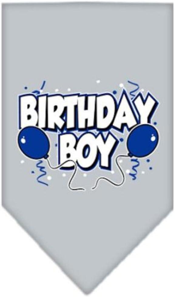 Large Red Mirage Birthday Boy Screen Print Bandana