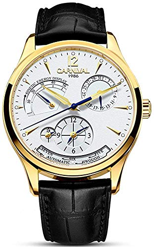 Men's Automatic Mechanical Watch Date Moon Phase 24-Hour Indication Calfskin Leather Transparent Watches (8762- Gold White)