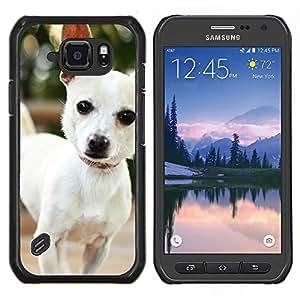 EJOOY---Cubierta de la caja de protección para la piel dura ** Samsung Galaxy S6Active Active G890A ** --Lindo perro de la chihuahua