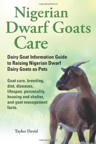 Nigerian Dwarf Goats Care: Dairy Goat Information Guide to Raising Nigerian Dwarf Dairy Goats as Pets. Goat care, breeding, diet, diseases, lifespan, ... and shelter, and goat management facts.