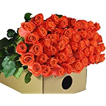 Farm2Door Wholesale Roses: 50 Fresh Orange Roses (Long Stemmed - 50cm) from Colombia - Farm Direct Wholesale Fresh Flowers
