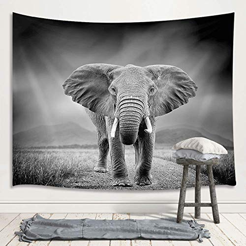 - Black and White Elephant Decor Tapestry, Wild Animals on African Grassland Art Wall Hanging for Bedroom Living Room College Dorm TV Backdrop Wall Blankets 71X60 Inches