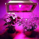 LED Grow Light,Escolite 50W Plant Floodlight,Full Spectrum Plant Light for Vegetable Flower Bloom. Review