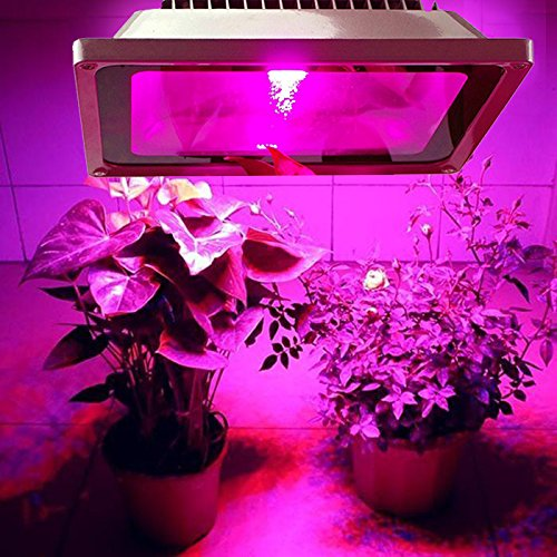 LED Grow Light,Escolite 50W Plant Floodlight,Full Spectrum Plant Light for Vegetable Flower Bloom.