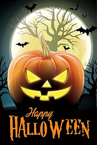 Halloween Garden Flag (Jack O Lantern) double sided reads correctly on both sides small 12 x 18 (Halloween Garden)