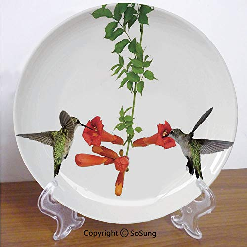 SoSung Hummingbirds Decor 6