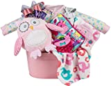 Newborn Baby Girl Gift Basket by Pellatt Cornucopia with Blanket, Plush Owl, Sleeper, Hat and Toys
