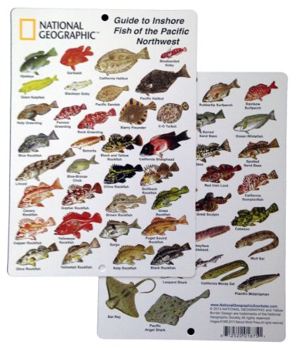 - National Geographic - Guide to Inshore fish of the Pacific Northwest - Fish ID Card (6 in by 9 in)