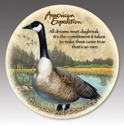 (American Expedition CTST-145 Stone Coaster - Canada Goose -Set Of 4)