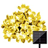 String Lights, LightsEtc 15.7ft 20 LED Solar Warm White Blossom Lighting Waterproof Flower Fairy Lights for Christmas Holiday Party Outdoor Houses Garden
