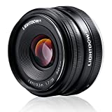 Lightdow 35mm F1.7-22 E-mount APS-C Fixed Prime Lens for Sony Alpha a6000 a6300 a6500 a5100 a5000 Mirrorless Digitial SLR Camera
