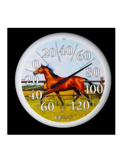 (Headwind Consumer Products 840-0030 EZREAD Dial Thermometer with Horse, 13.25-Inch)