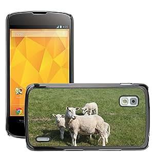 Super Stella Slim PC Hard Case Cover Skin Armor Shell Protection // M00144361 Sheep Dyke Lamb Animal Dike // LG Nexus 4 E960