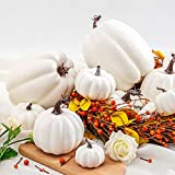 12Pcs Assorted Sizes Artificial Pumpkins Decoration
