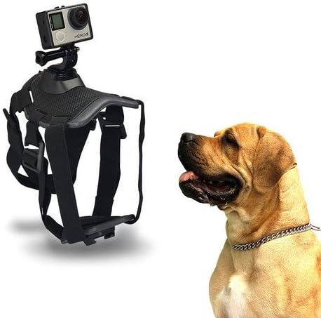 ORDEL® Arnés Soporte Perros Animales cámara GoPro HD Hero 1 2 3 3+ ...