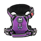 PoyPet No Pull Dog Harness, [Release on Neck]...