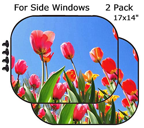MSD Car Sun Shade - Side Window Sunshade Universal Fit 2 Pack - Block Sun Glare, UV and Heat for Baby and Pet - Image ID 19452124 Colorful Tulip Garden in Boston Public Garden USA