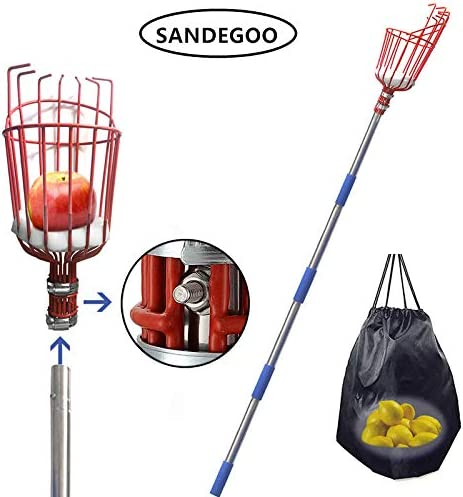 SANDEGOO Fruit Picker Tool, 8-Foot Fruit Picker with Light-Weight Aluminum Telescoping Pole, Fruit Picking Equipment for Getting Apple Oranges and Fruits Tree 8 TF