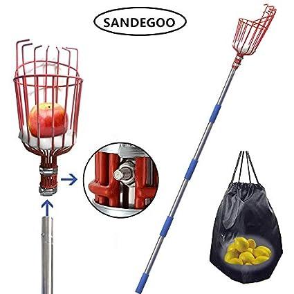 Amazon.com: SANDEGOO - Recogedor de frutas, un recogedor de ...