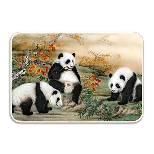 fuxinwang Panda Antivirus Free Doormat Entrance Rug Floor Indoor/Bathroom Kitchen Dirt Trapper Washable Door Mat with Non Slip Backing
