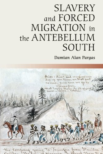 Search : Slavery and Forced Migration in the Antebellum South (Cambridge Studies on the American South)