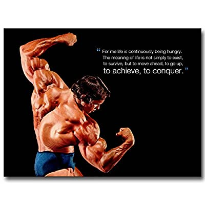 13X18Inch Conquer - Arnold Schwarzenegger Bodybuilding Motivational Quote Silk Poster