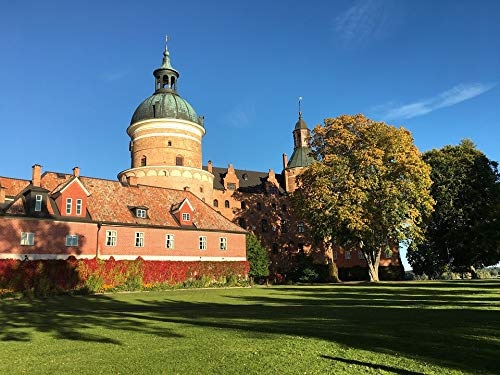 Gripsholm Castle - Home Comforts Peel-n-Stick Poster of Gripsholm Castle Sweden Mariefred Autumn Castle Vivid Imagery Poster 24 x 16 Adhesive Sticker Poster Print