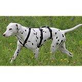 Feltmann NoExit Brustgeschirr ausbruchsicher, Soft, Uni Schwarz, Sicherheitgeschirr für Hunde