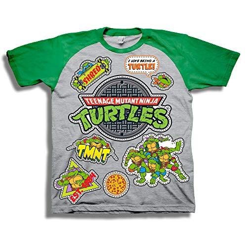 (Teenage Mutant Ninja Turtles Short Sleeve T-Shirt - Toddler - Nickelodeon (3T) Gray)