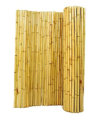 FOREVER BAMBOO Natural Rolled Fencing, 6' H x 8' L