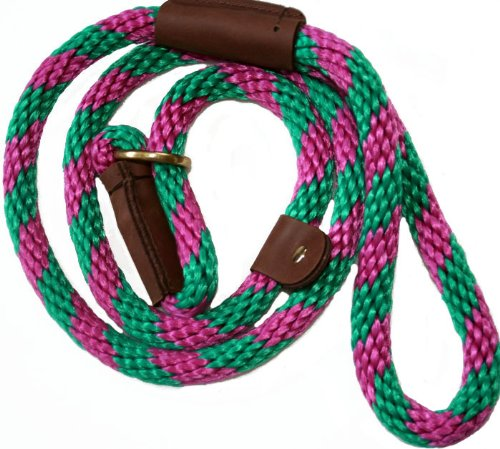 Lone Wolf Slip Lead with Leash and Collar for Pets, 1/2 by 4-Feet, Raspberry Twist Raspberry/Green Spiral