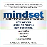 Bargain Audio Book - Mindset