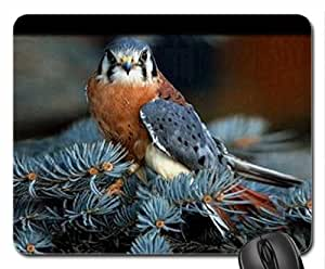American Kestrel Mouse Pad, Mousepad (Birds Mouse Pad) by runtopwell