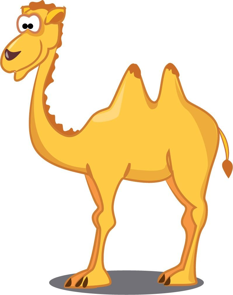 Camel Cartoon Animal Home Decal Vinyl Sticker 14'' X 14''