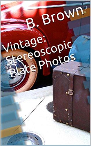 Vintage: Stereoscopic Plate Photos (Vintage Postcards Book 2)