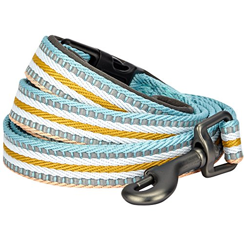 Blueberry Pet 8 Colors 3M Reflective Multi-Colored Stripe Dog Leash with Soft & Comfortable Handle, 5 ft x 3/4