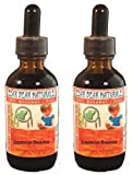 Potent Echinacea Formula for Kids; Natural Immune Booster - Package of 2