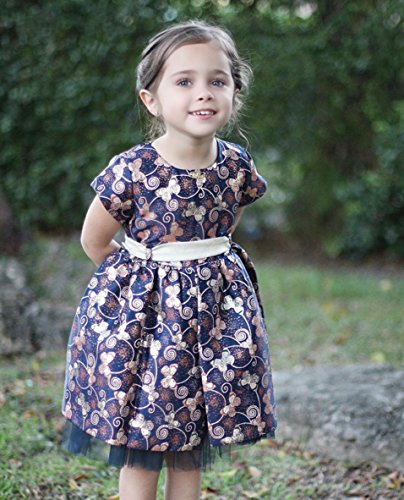 Lilax Little Girls' Shimmer Butterfly Occasion Dress 3T Navy