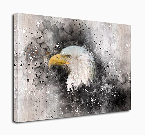 Canvas Prints Wall Art North American Bald Eagle Painting Modern Artwork For Home Decoration 30