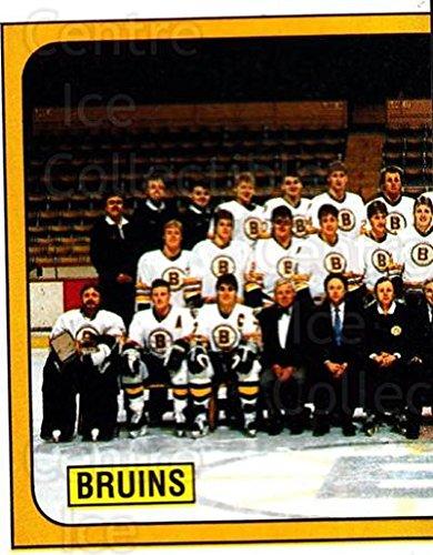 (CI) Boston Bruins, Team Photo Hockey Card 1988-89 Panini Stickers 215 Boston Bruins, Team Photo