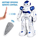 Best Robots - SGILE Gesture Sensing Robot Toy Kit, Remote Control Review