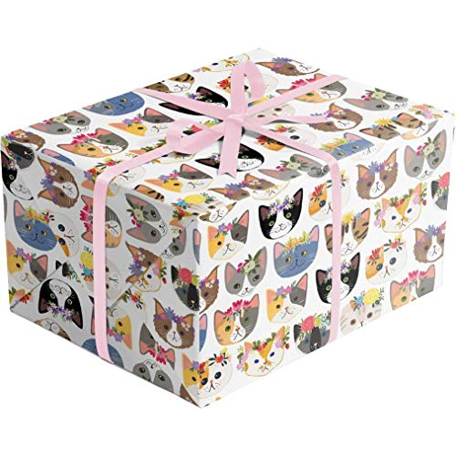 (Kitty Cats - 30 Inches Wide x 10 Feet Long - Folded Flat Sheet Gift Wrapping Paper   Printed in Italy   Colors of Rainbow)